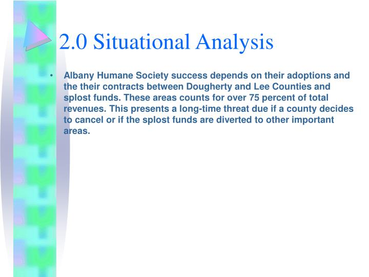 2.0 Situational Analysis
