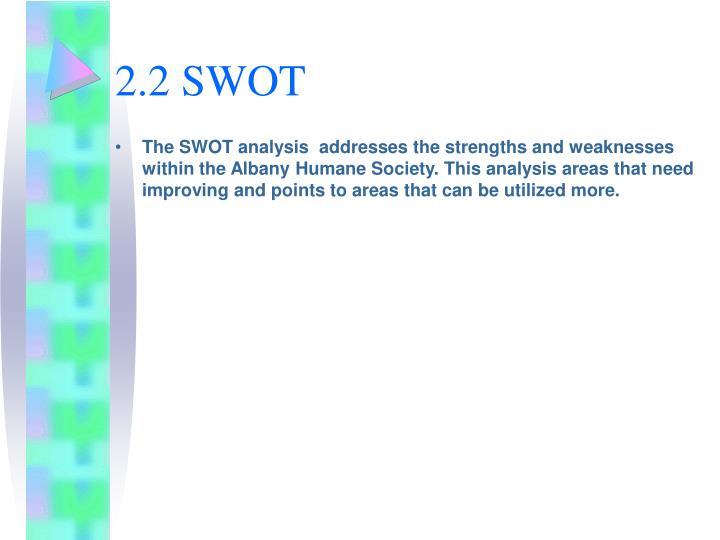 2.2 SWOT