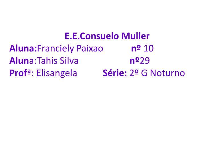 E.E.Consuelo Muller
