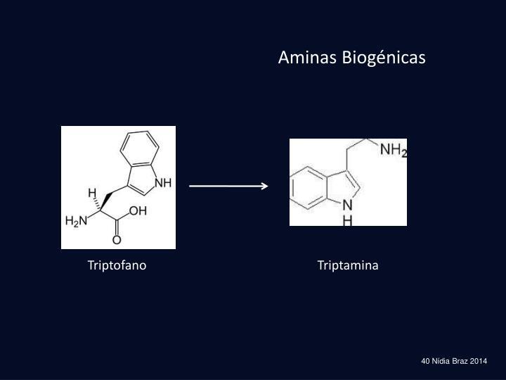 Aminas Biogénicas
