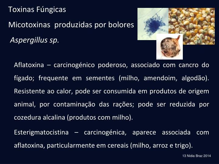 Toxinas Fúngicas