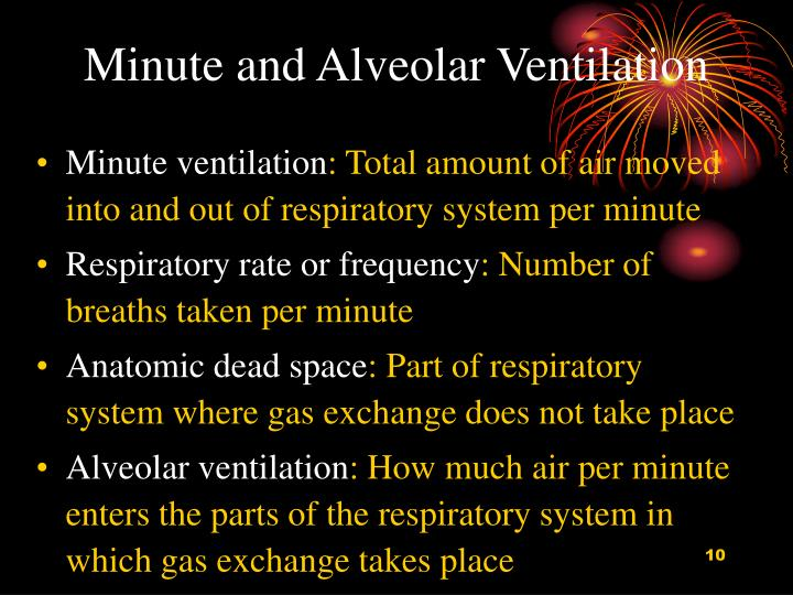 Minute and Alveolar Ventilation