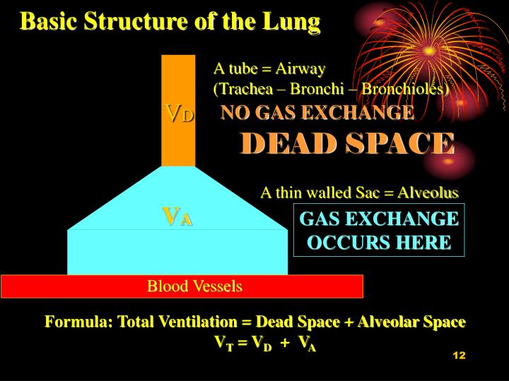 A tube = Airway