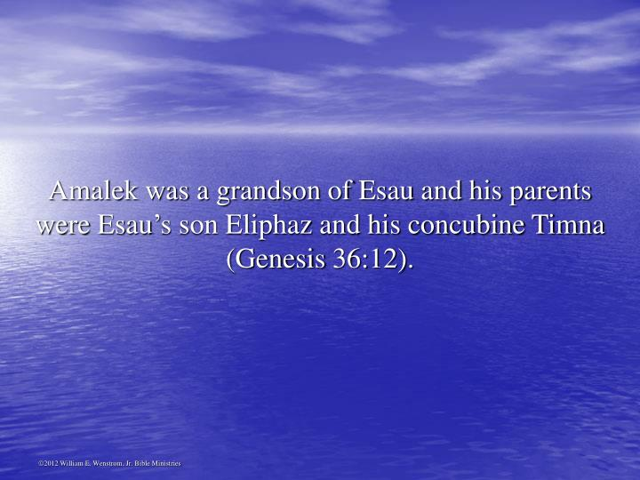 Amalek was a grandson of Esau and his parents were Esau's son Eliphaz and his concubine Timna (Genesis 36:12).