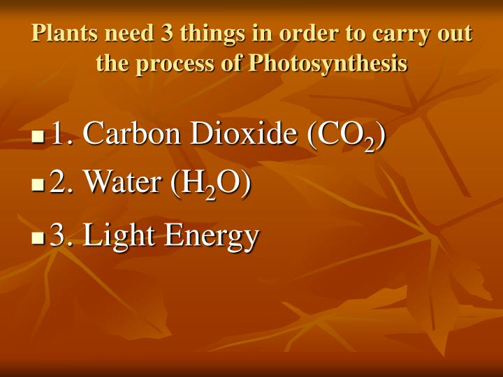 Plants need 3 things in order to carry out the process of Photosynthesis