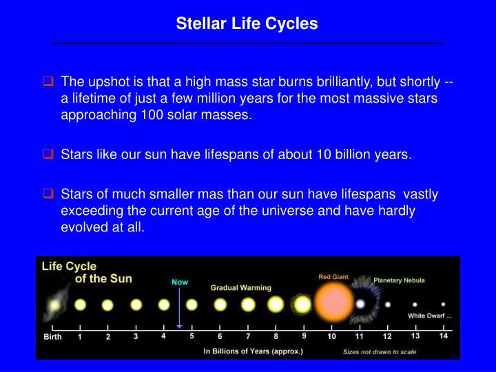 Stellar Life Cycles