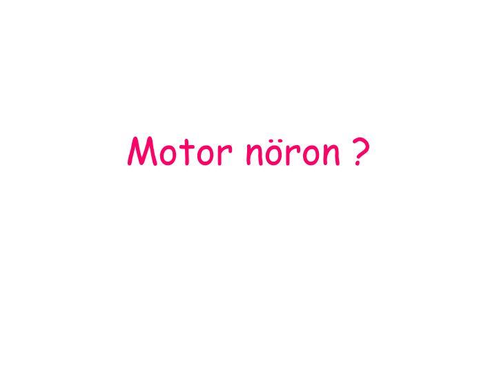 Motor nöron ?