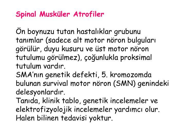Spinal Musküler Atrofiler