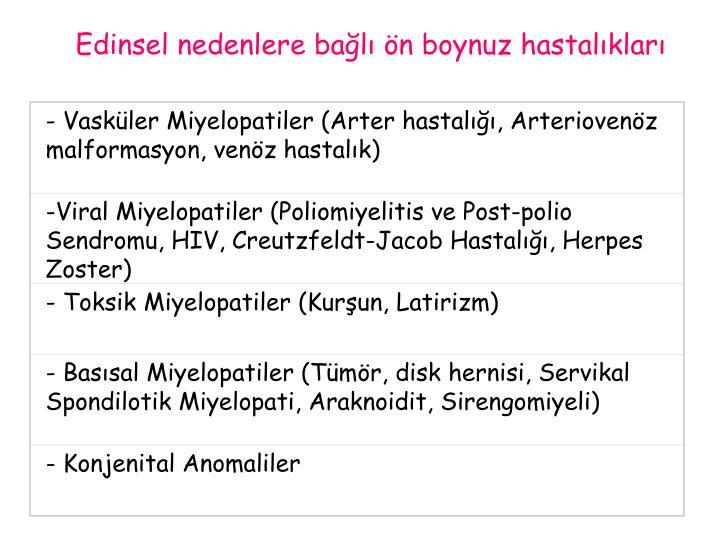 - Vasküler Miyelopatiler (Arter hastalığı, Arteriovenöz malformasyon, venöz hastalık)