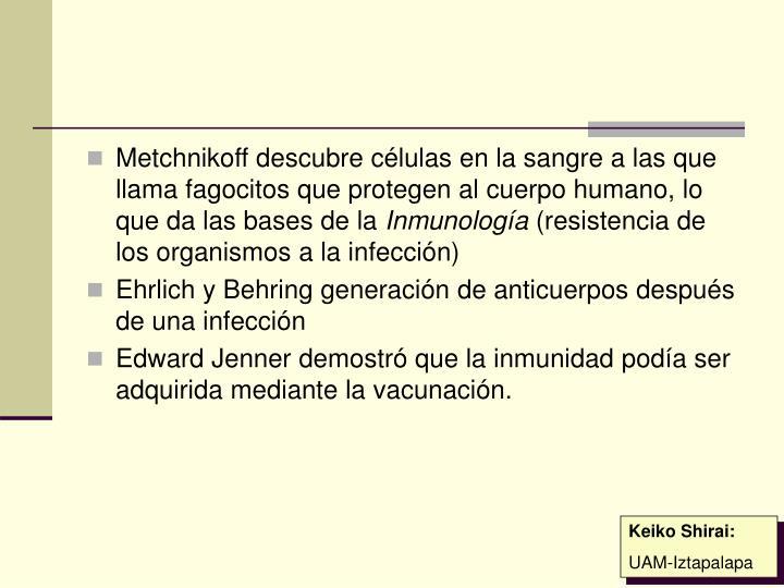 Metchnikoff descubre células en la sangre a las que llama fagocitos que protegen al cuerpo humano, lo que da las bases de la