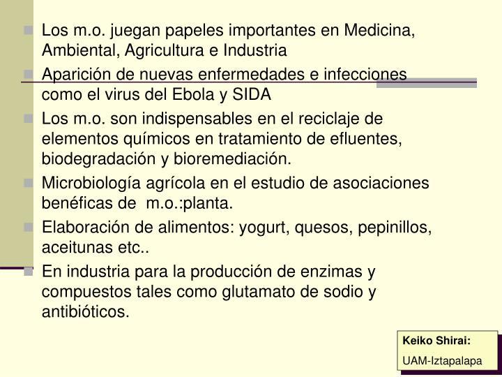 Los m.o. juegan papeles importantes en Medicina, Ambiental, Agricultura e Industria