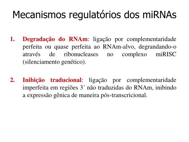 Mecanismos regulatórios dos miRNAs
