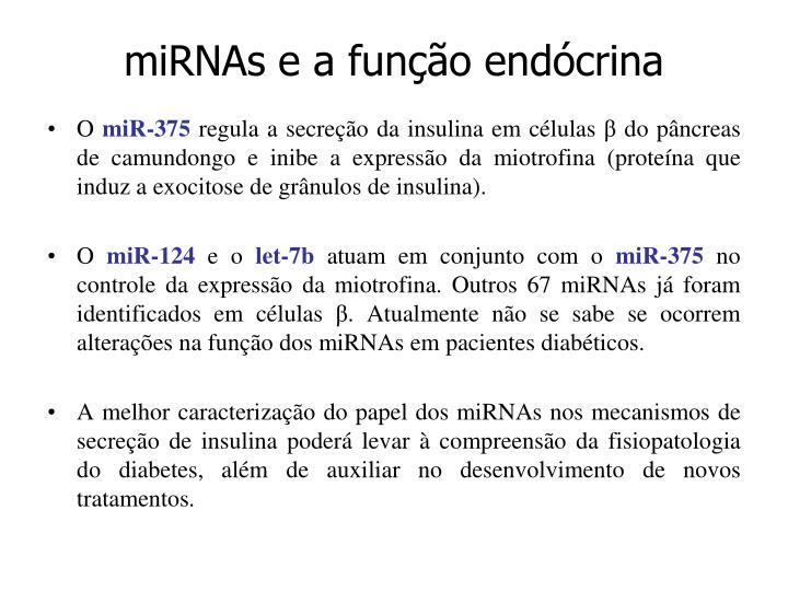miRNAs e a função endócrina