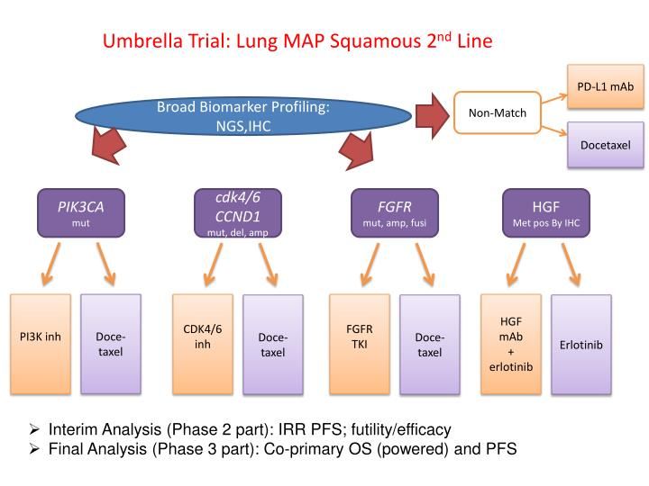 Umbrella Trial: Lung MAP Squamous 2