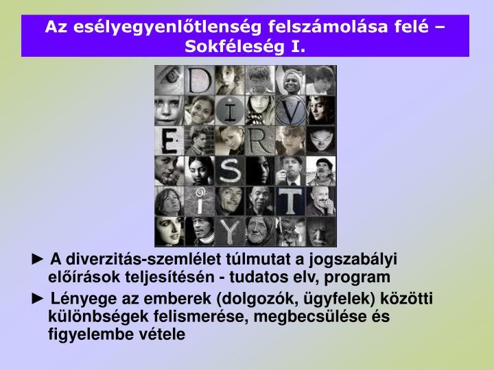 Az esélyegyenlőtlenség felszámolása felé – Sokféleség I.