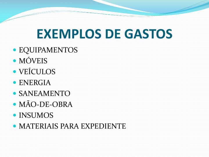 EXEMPLOS DE GASTOS
