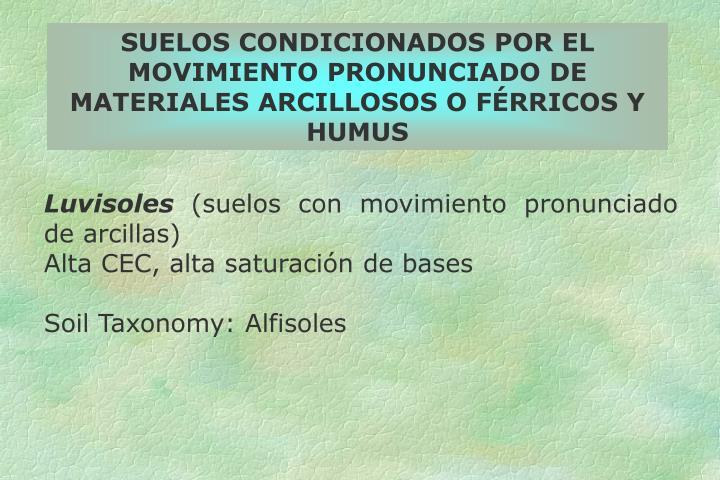 SUELOS CONDICIONADOS POR EL MOVIMIENTO PRONUNCIADO DE MATERIALES ARCILLOSOS O FÉRRICOS Y HUMUS