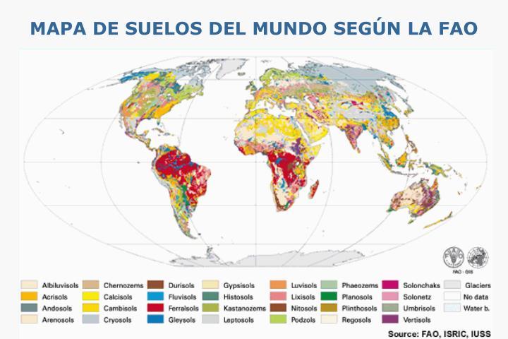 MAPA DE SUELOS DEL MUNDO SEGÚN LA FAO
