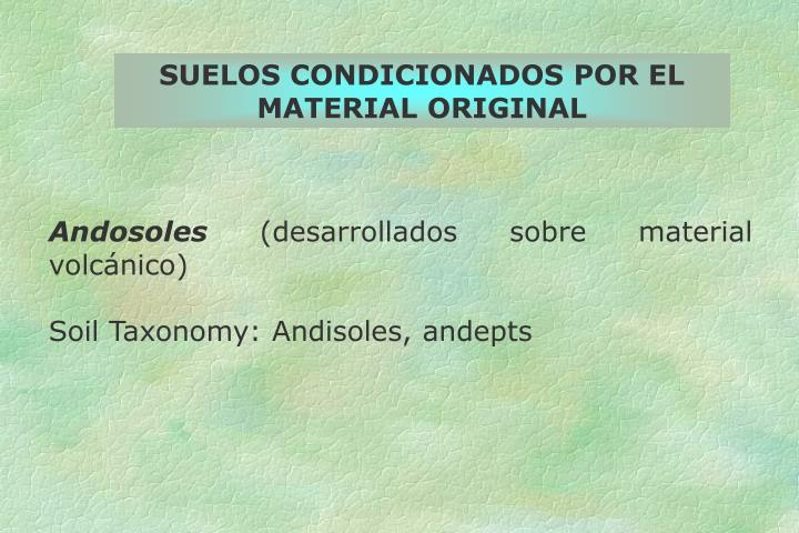SUELOS CONDICIONADOS POR EL MATERIAL ORIGINAL