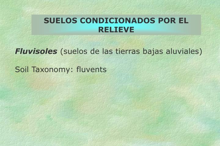 SUELOS CONDICIONADOS POR EL RELIEVE