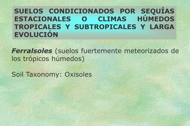 SUELOS CONDICIONADOS POR SEQUÍAS ESTACIONALES O CLIMAS HÚMEDOS TROPICALES Y SUBTROPICALES Y LARGA EVOLUCIÓN