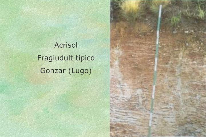 Acrisol