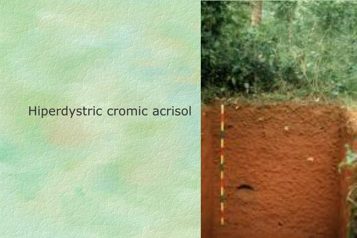 Hiperdystric cromic acrisol