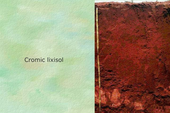 Cromic lixisol