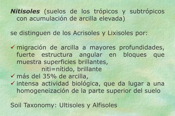 Nitisoles