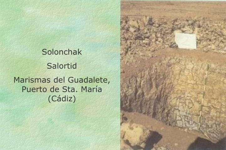 Solonchak