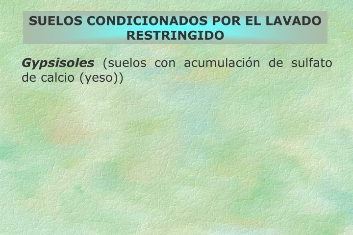 SUELOS CONDICIONADOS POR EL LAVADO RESTRINGIDO