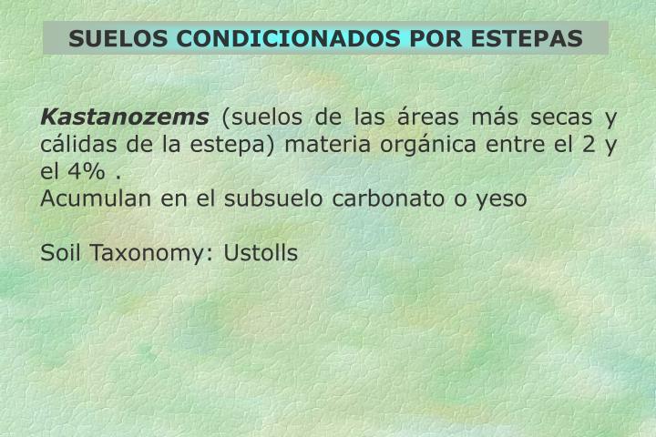 SUELOS CONDICIONADOS POR ESTEPAS