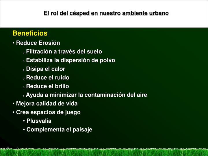 El rol del césped en nuestro ambiente urbano