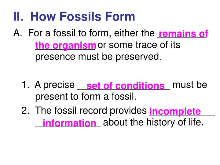 II.  How Fossils Form
