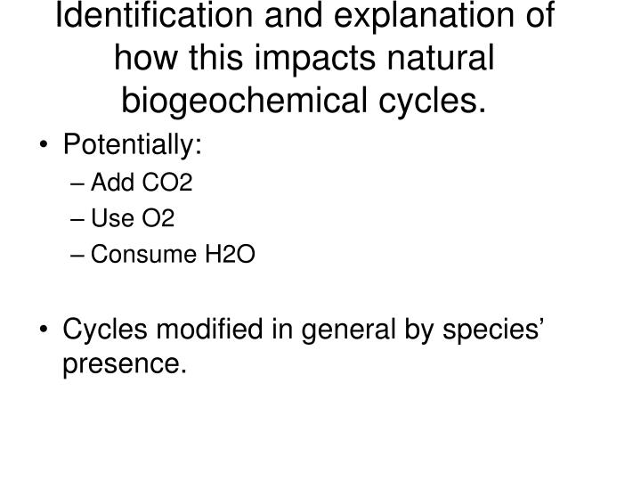 Identification and explanation of how this impacts natural biogeochemical cycles.