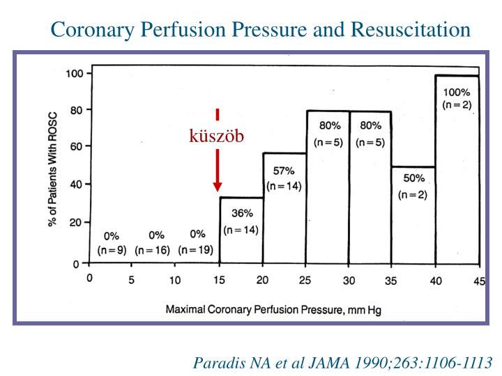 Coronary Perfusion Pressure and Resuscitation