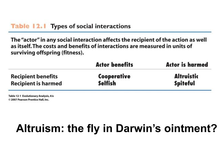 Altruism: the fly in Darwin's ointment?