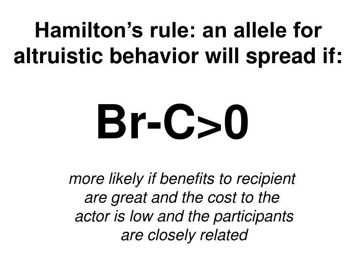 Hamilton's rule: an allele for
