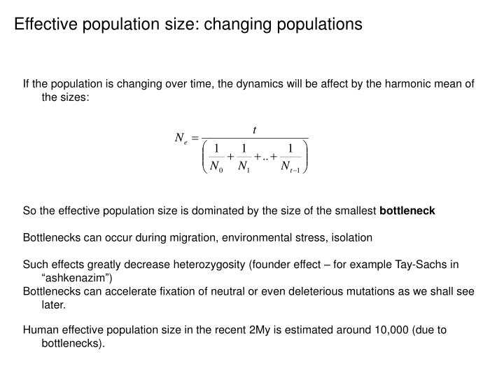Effective population size: changing populations