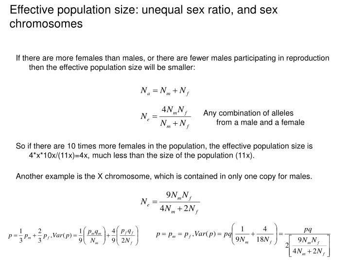 Effective population size: unequal sex ratio, and sex chromosomes