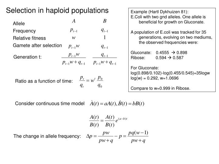 Selection in haploid populations