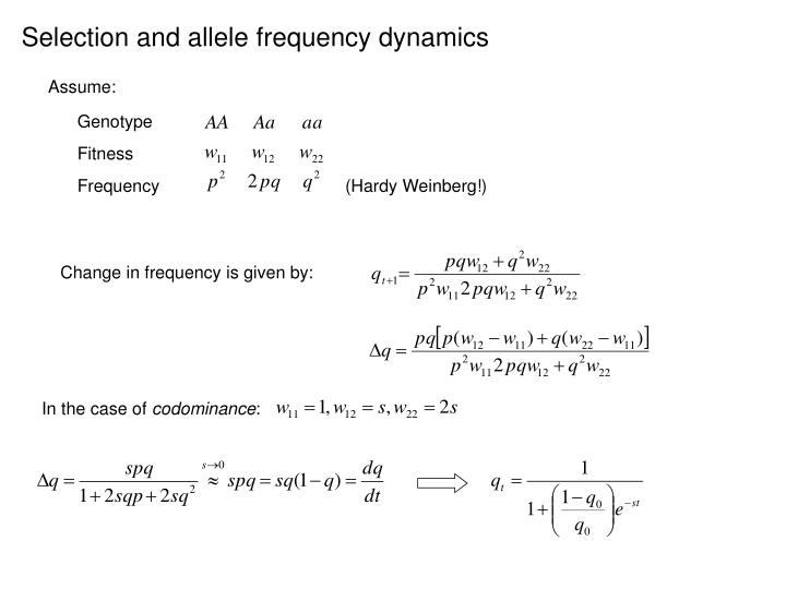 Selection and allele frequency dynamics