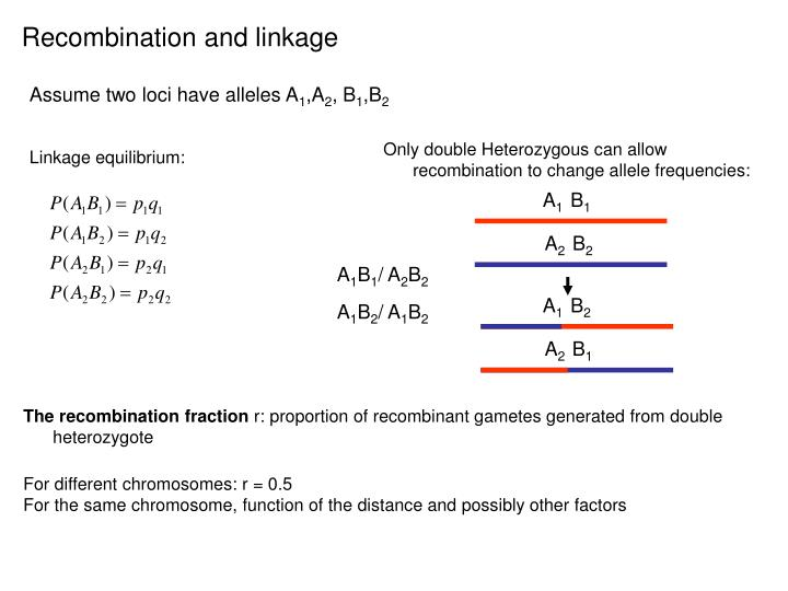Recombination and linkage