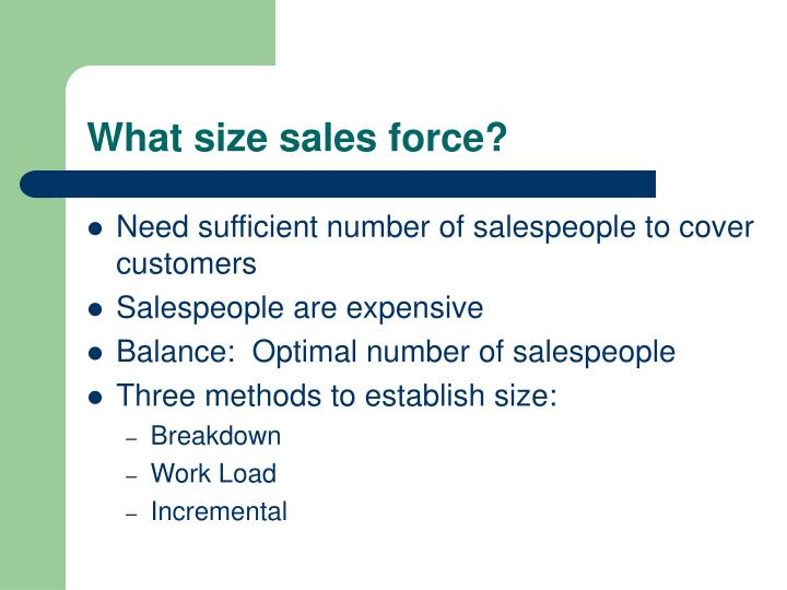 What size sales force?