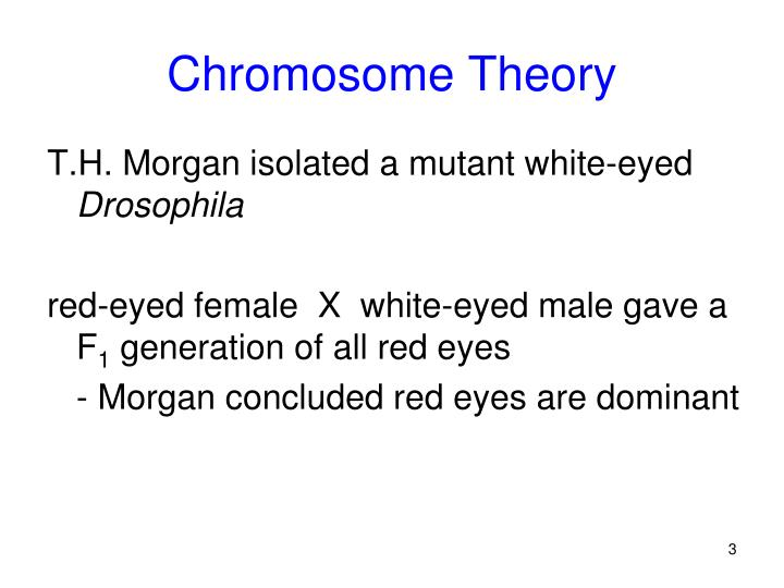 Chromosome theory1