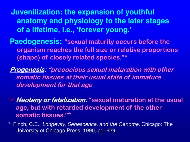 Juvenilization: the expansion of youthful anatomy and physiology to the later stages of a lifetime, i.e., 'forever young.'