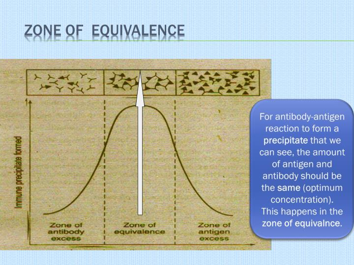 Zone of  Equivalence