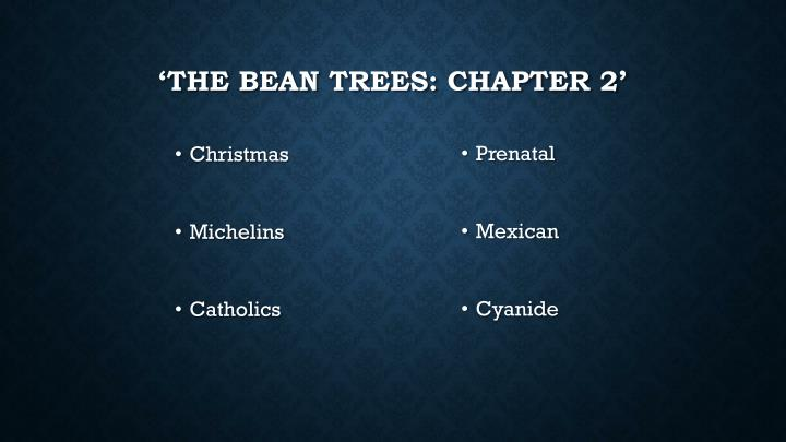 'The Bean Trees: Chapter 2'