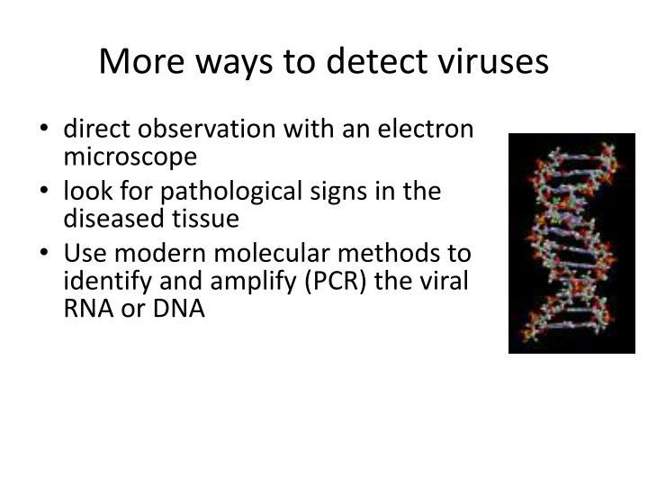 More ways to detect viruses