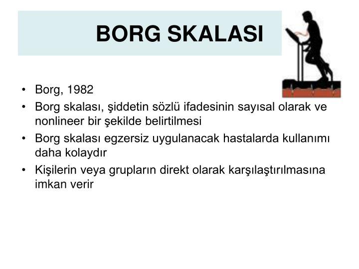 BORG SKALASI